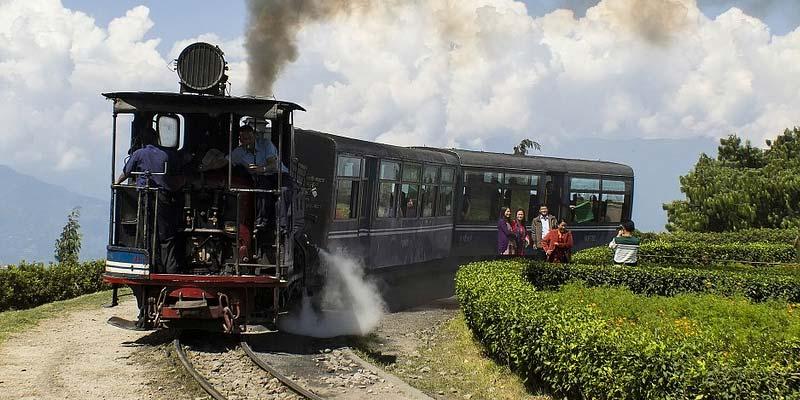 Darjeeling Summer Holidays
