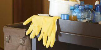 Best Reusable Gloves